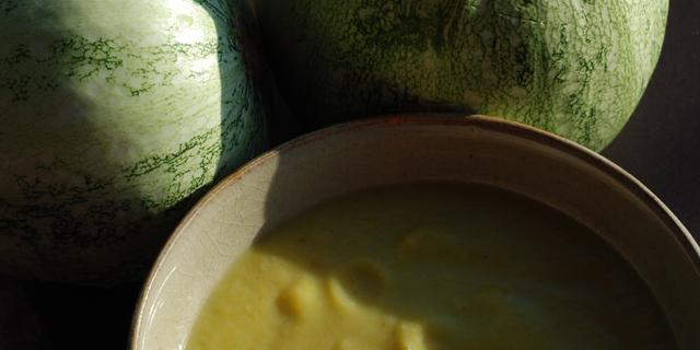 Légume de saison : invasion de courgettes au potager