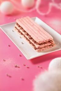 bûche biscuit rose Fossier